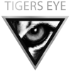 tigers eye logo-300x300